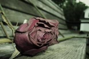 صوره كلام في الرومانسيه حزين