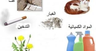 صور بحث مكتوب حول الامراض