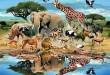 بالصور بحث عن اسماء الحيوانات 113046b4375f927c2 110x75