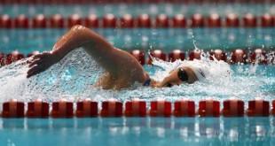 صوره معلومات عن مسابقة السباحة