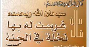 صورة فضل سبحان الله وبحمده , سبح ربك العظيم 100 مرة كل يوم وستنبهر بالنتيجة