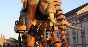 بحث حول الفيل بالفرنسية