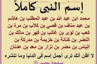 بالصور من هو النبي محمد عليه الصلاة والسلام 1891150 653654568029072 2065420084 n 310x205