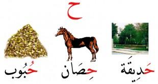 صور كلمات تبدا بحرف الحاء