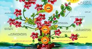 صوره معلومات عن شجرة الانبياء والرسل