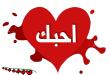 بالصور رسائل رومانسية بالفرنسية مترجمة بالعربية 78688.imgcache 110x75