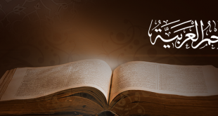 صوره معنى كلمة زغب في معجم المعاني الجامع