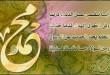 بالصور اناشيد المولد النبوي الشريف a3b1c2431a9d1a217c5544c16e2b6291 110x75