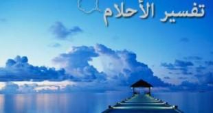 بالصور تفسير الصراصير الكبيرة في الحلم almastba.com 1392211938 941 310x165