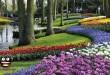 بالصور اجمل صور مناظر زهور almstba.com 1367095196 339 110x75