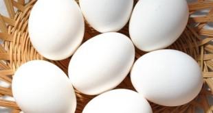 صورة صفار البيض في المنام