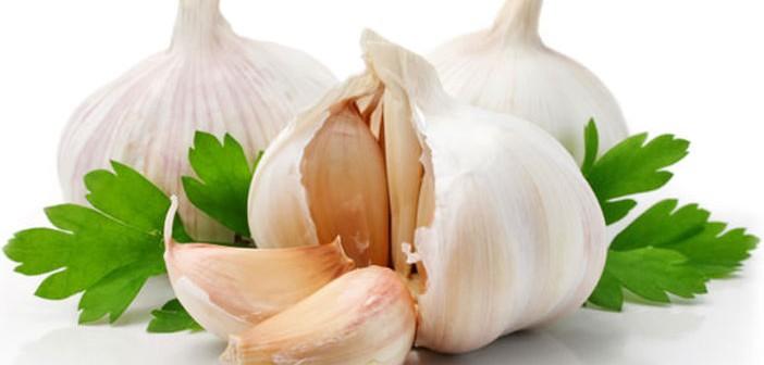 garlic-702x336