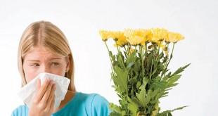 بالصور علاج الحساسية بالاعشاب الطبيعية health2.619359 310x165