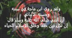 بالصور جمال الخلق وكمال الخلق hqdefault236 310x165