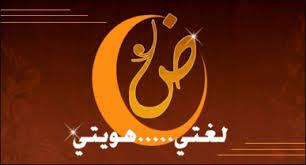 بالصور اللهجة المغربية هل تحولت للغة مستقلة imgres71