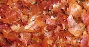بالصور ماهي فوائد قشر البصل للتخلص من الوزن الزائد onions red peel crispy 310x165