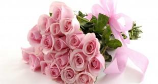 صور صور زهور وباقات ورد جميلة