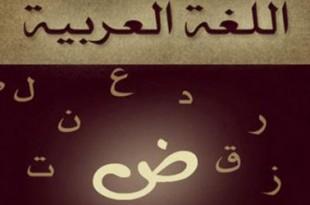 صوره اللغة العربية بحر