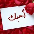 shbbab.com1396050585_320