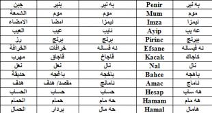 صورة اللغة الكردية العراقية