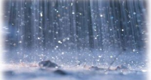 صور اية قرانية عن المطر