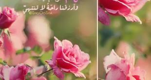 صوره كلمات جميلة مما راق لي