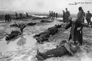 صوره بحث الحرب العالمية الاولى