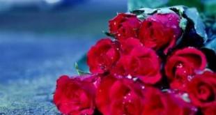 بالصور احدث كلام جميل عن الحياة والحب اجمل جمل الحب 310x165