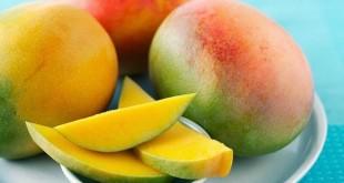 بالصور هل تناول فاكهة المانجو يزيد الوزن اضرار المانجو 310x165