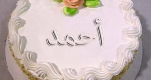 بالصور صور تورتة باسم احمد تورتة اعياد ميلاد مكتوب عليها احمد2 310x165