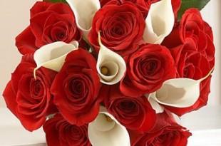 صوره اجمل باقة ورد حمراء  10 باقة ورد  للعروس من الانستقرام