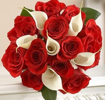 صور اجمل باقة ورد حمراء  10 باقة ورد  للعروس من الانستقرام