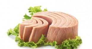 بالصور طريقة عمل سمك التونة المعلب فى المنزل بسهوله وبساطه فوائد التونة4 ثقف نفسك 310x165