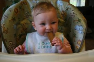 صوره وجبات للاطفال 8 شهور