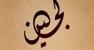 صور معنى اسم لجين في القران
