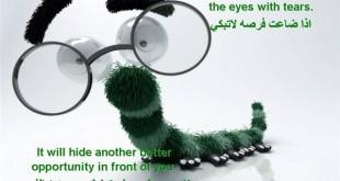 صوره حكمة اليوم باللغة الانجليزية