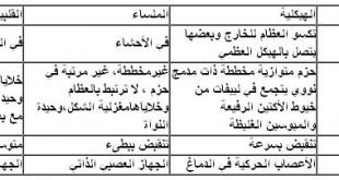 صوره مصطلحات قاموس طبية وصيدلانيه
