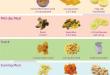 بالصور اكل طفل 8 شهور جدول تنظيم اوقات الرضاعة 1381128417 food 110x75