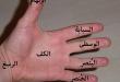 بالصور اسماء اصابع اليد باللغة العربية الفصحي 220px يد الإنسان 110x75