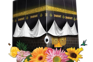 صوره مجموعة صور سكرابز العيد
