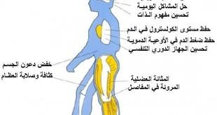 صوره المشي وفوائده لشد الجسم