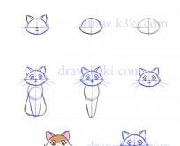 صور تعلم كيف ترسم قطة