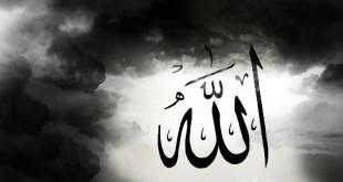 بالصور عجائب الخالق سبحانه وتعالى 63563104619373211829 310x165