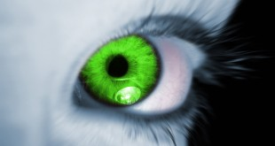 صوره للعين والحسد 20 علامة تؤكد اصابتك بالعين والحسد والسحر
