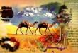 بالصور تعبير عن هجرة الرسول صلى الله عليه وسلم 73524 large 110x75