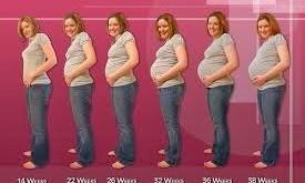 صوره ماهي اعراض الحمل ببنت او ولد