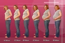 صورة ماهي اعراض الحمل ببنت او ولد