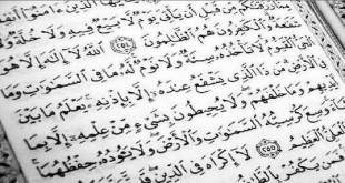 بالصور ارقام في القران احصاءات قرانية في القران الكريم المصحف الالكتروني T529 310x165