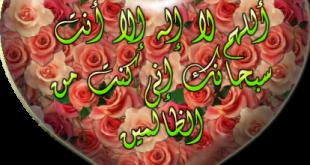 صوره اجمل صور قلوب اسلاميه