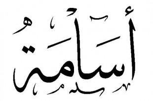 صوره ما معنى اسم اسامة في اللغة العربية